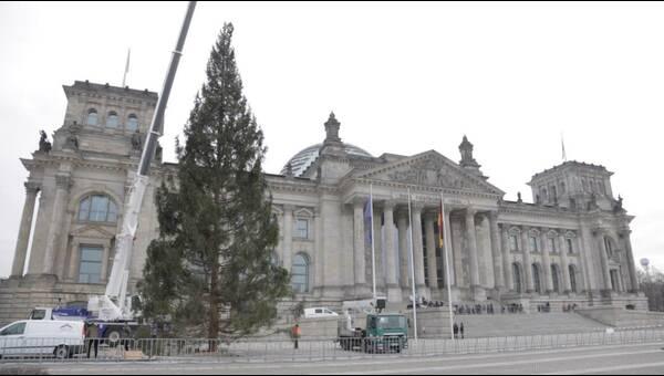 Wann Wird In New York Der Weihnachtsbaum Aufgestellt.Weihnachtsbaum Am Rockefeller Center Angekommen Dpa Video